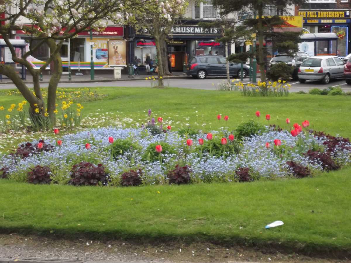 Acocks Green Village flowers on the green April 2014