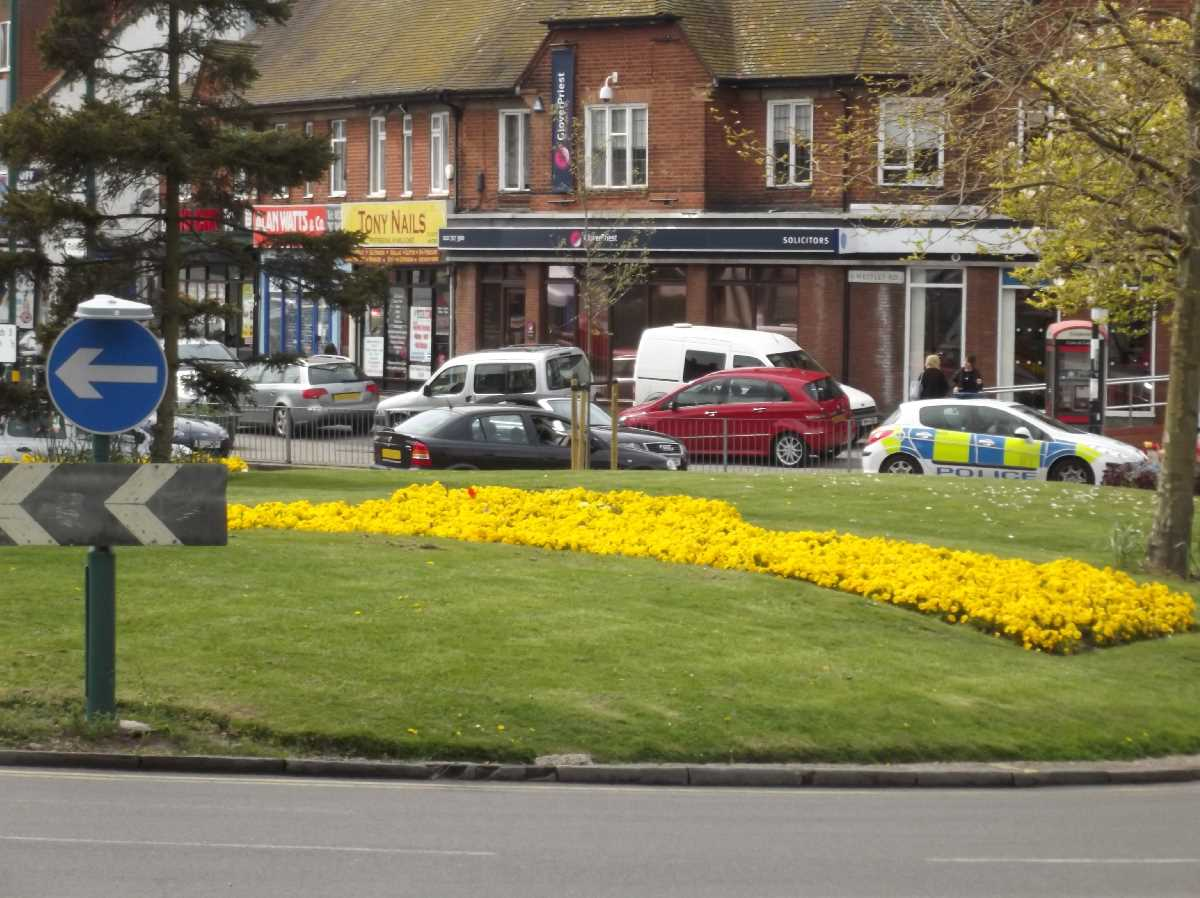 Acocks Green Village flowers on the green May 2015