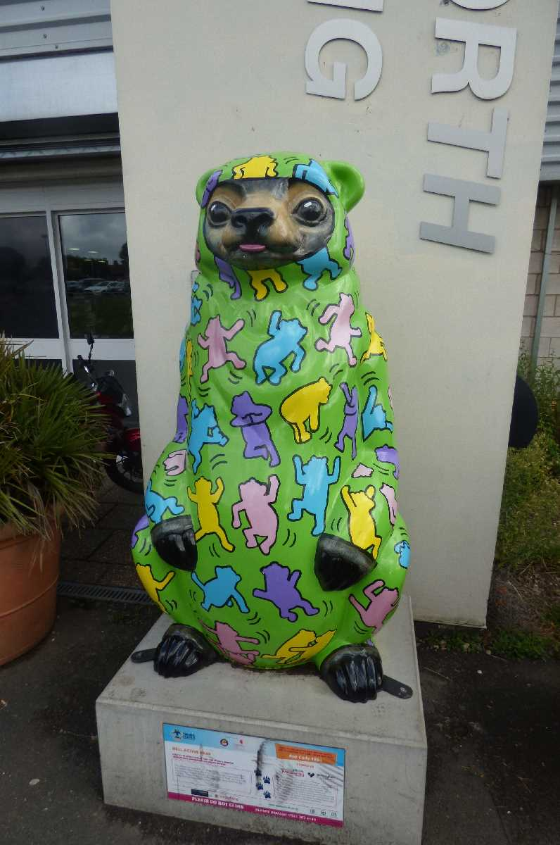 Handsworth Park - The Big Sleuth - Wellbeing Bear