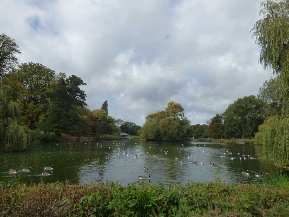Handsworth Park boating lake