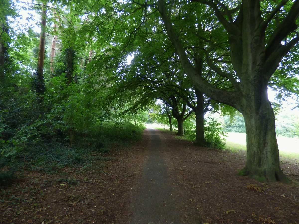 Kings Norton Park