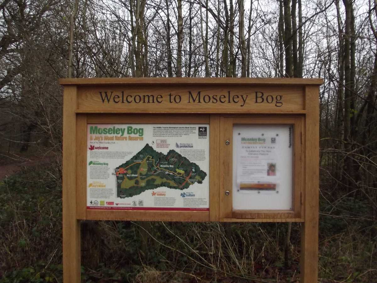 Welcome to Moseley Bog