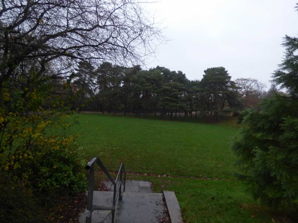 Raining in Kings Heath Park