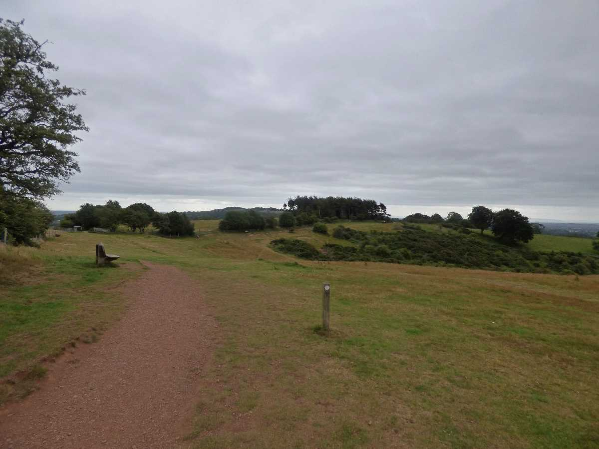 Waseley Hills Country Park