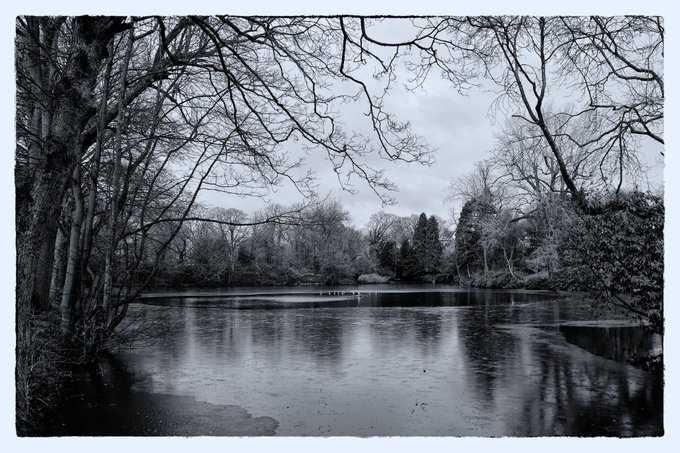 Barry Moseley Park